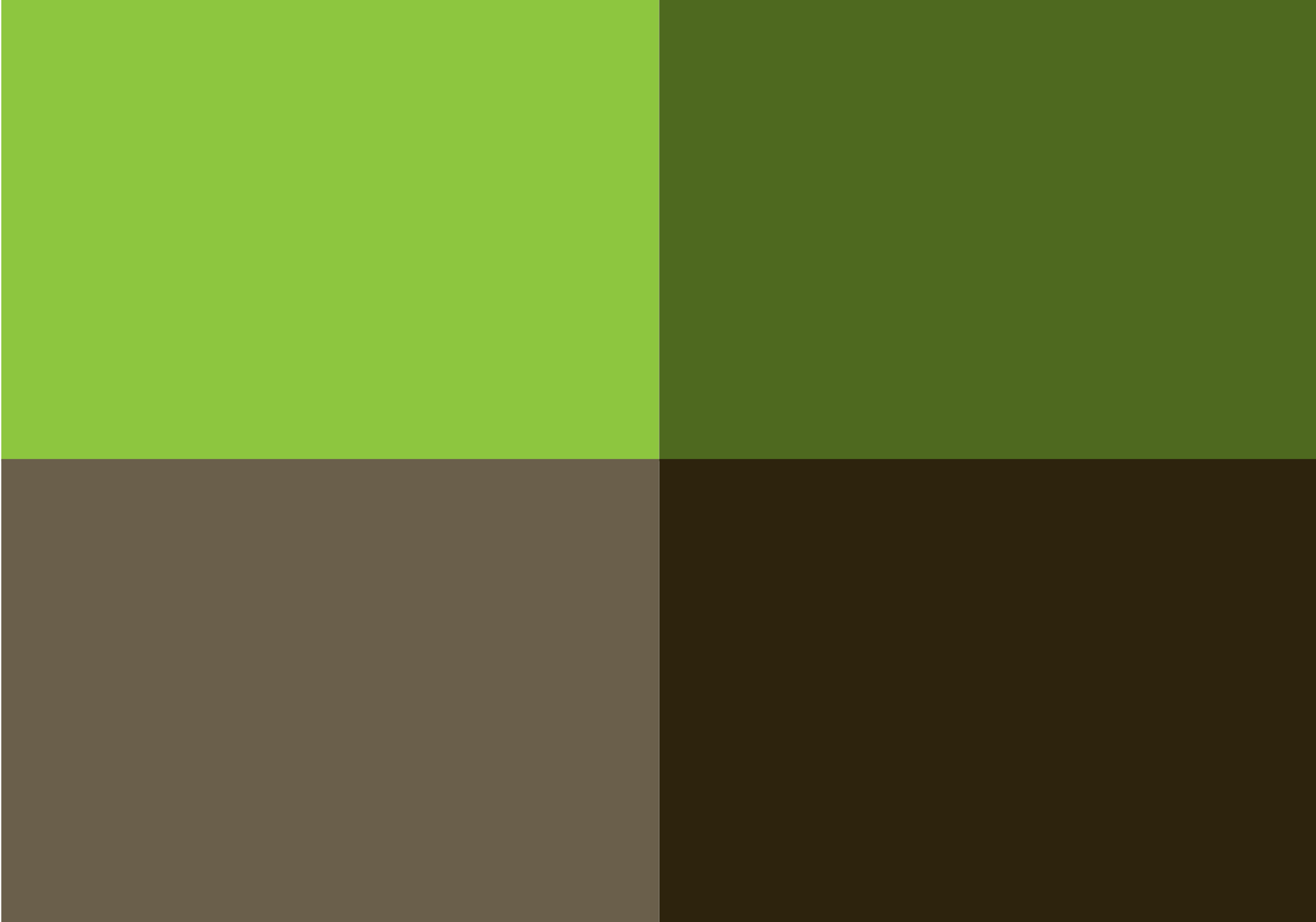 RSI brand color palette